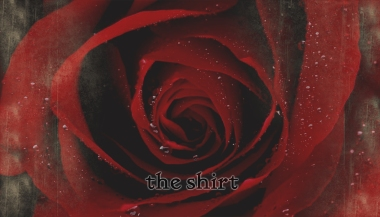 The Shirt, cover. ©2011/2